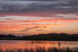 photo of Lake Stella Sunset, Crescent City FL
