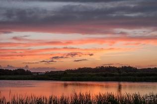 photo of Lake Stella Sunset, Crescent City FL