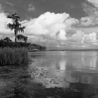 photo, Crescent Lake Shoreline, Crescent City Florida