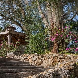 photo of Ravine Gardens Steps, Ravine Gardens State Park, Palatka FL