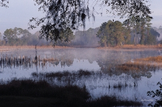 photo of Mist over Little Lake Como, Lake Como, FL