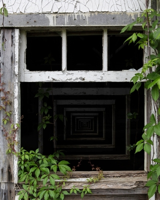 Window #363